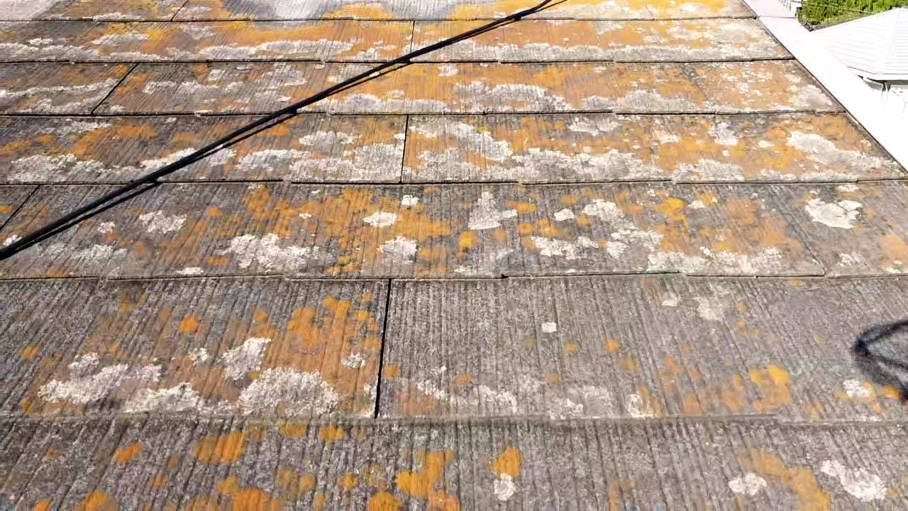 常滑市 塗装 屋根